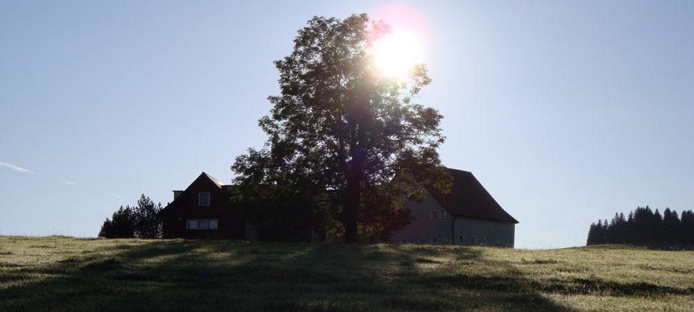 urologie_appenzellerland_landschaft_13