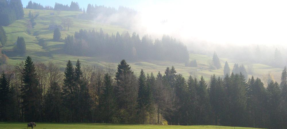 urologie_appenzellerland_landschaft_16